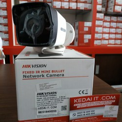 HIKVISION IP CAMERA DS-2CD1001-I